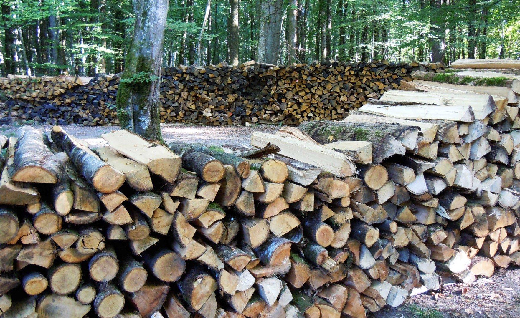 Bois de chauffage ch teau et domaine de menetou salon - Coupe de bois de chauffage sur pied a vendre ...